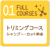 FULL COURSES