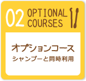 OPTIONAL COURSES